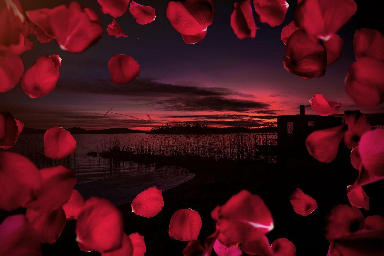 Alla Hjärtans Dag på Almåsa Havshotell